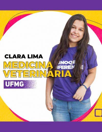 2020-Clara Lima-MEDICINA VETERINARIA-UFMG