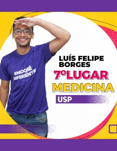 2020-Luís Felipe Gonçalves Borges - 7º LUGAR - MEDICINA - USP